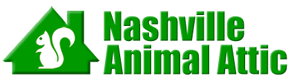 Nashville Animal Attic